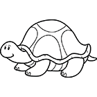 Coloriage une tortue