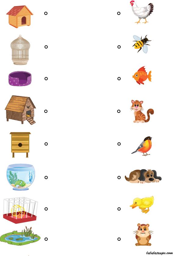 Chacun chez soi lulu la taupe jeux gratuits pour enfants for Rehausseur 3 ans et plus