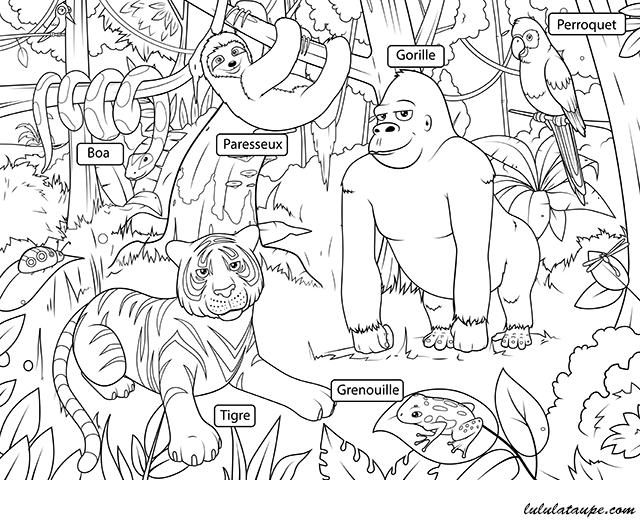Les Animaux De La Jungle Lulu La Taupe Jeux Gratuits Pour Enfants
