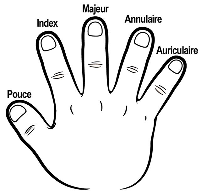 Les cinq doigts de la main lulu la taupe jeux gratuits - Main en dessin ...