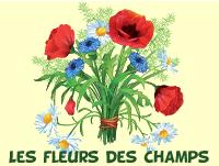 Coloriage Anti Stress Nature Et Decouverte.Nature Lulu La Taupe Jeux Gratuits Pour Enfants