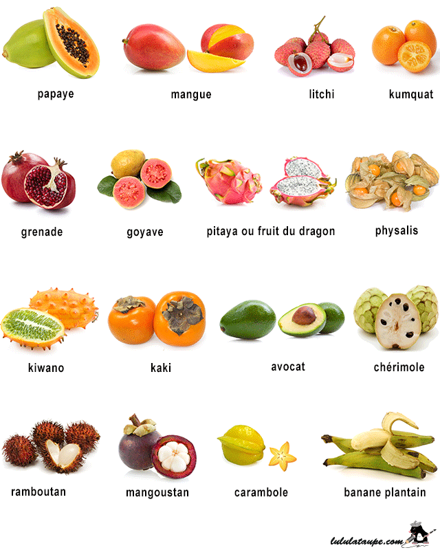 https://lululataupe.com/images/decouverte/nature/fruits-3.png