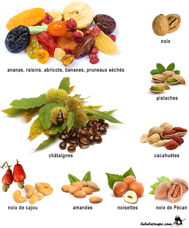 https://lululataupe.com/images/decouverte/nature/fruits-secs.png