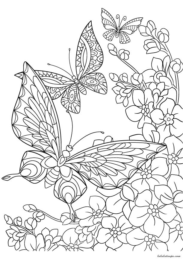 Coloriage antistress pour adultes des papillons lulu la taupe jeux gratuits pour enfants - Dessin papillon a decouper ...