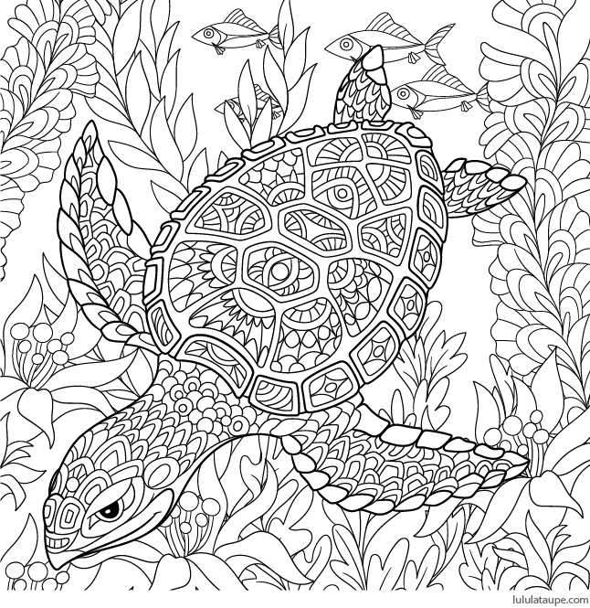 Coloriage antistress une tortue marine lulu la taupe - Dessins anti stress ...