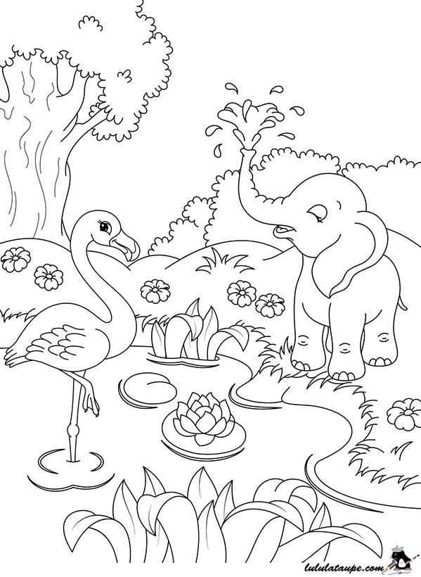 coloriage des animaux au bord de l 39 eau lulu la taupe jeux gratuits pour enfants. Black Bedroom Furniture Sets. Home Design Ideas
