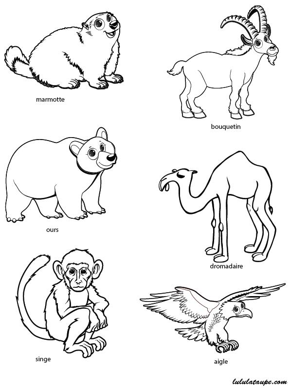 coloriage animaux jeux meilleures id es coloriage pour les enfants. Black Bedroom Furniture Sets. Home Design Ideas